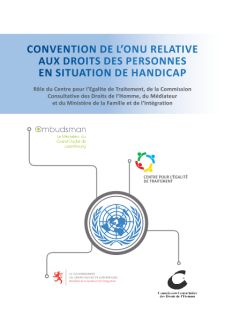 Convention de l'ONU relative aux Droits des Personnes en situation de Handicap - Monitoring